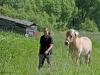 Anna und ihre Pferde