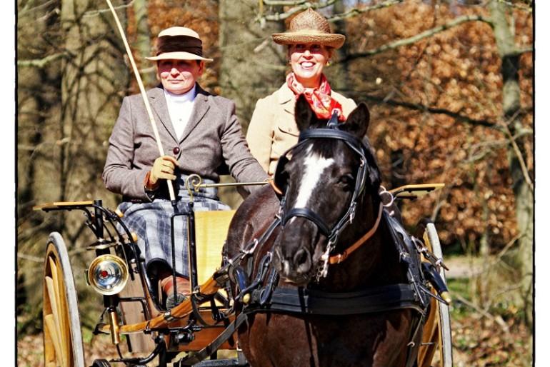 5. Internationaler Traditions-Fahrwettbewerb auf Gut Basthorst