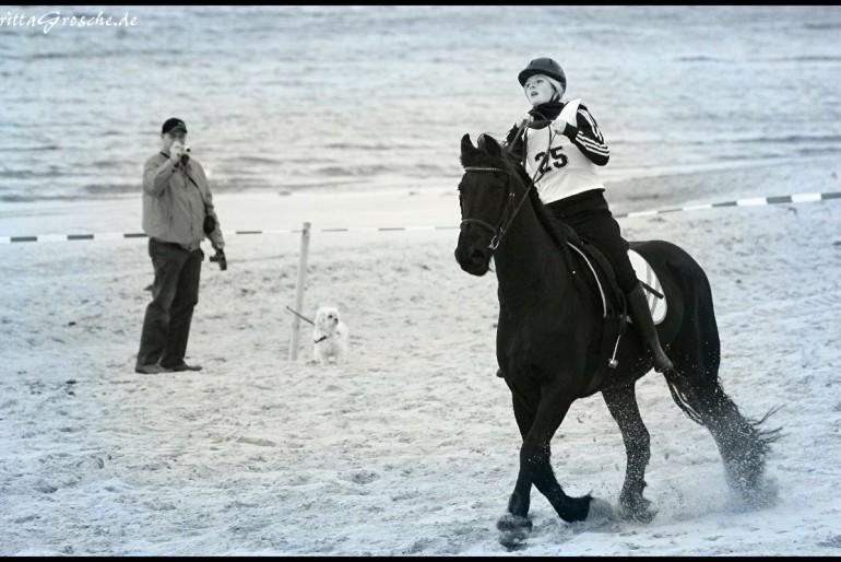 Pferdederby 2013 in Scharbeutz