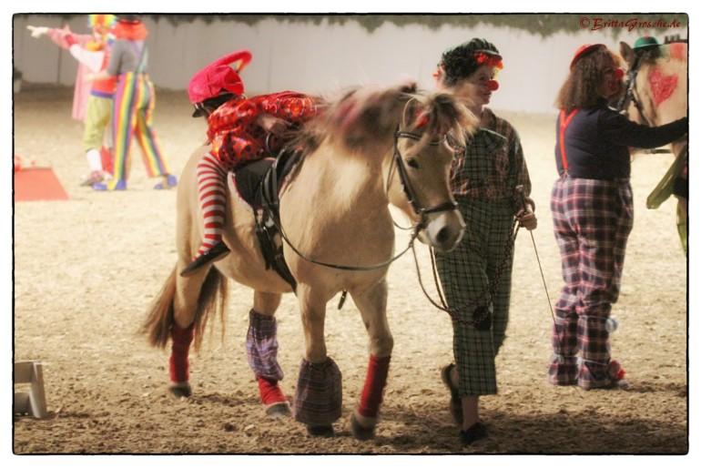 Alles Zirkus 2015